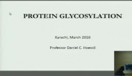 VEPP online Lecture on The Importance of Sugars in Protein Function